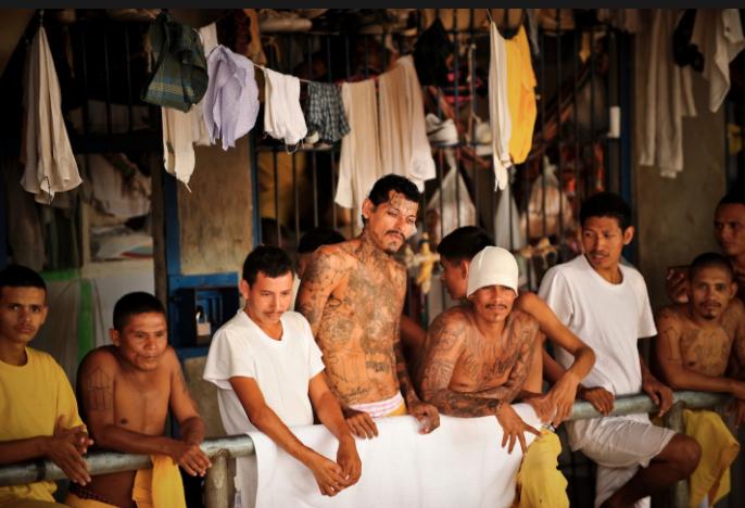 Cómo se vive adentro de una prisión entre tortura y maras en 24 fotografías de Meredith Kohut 8