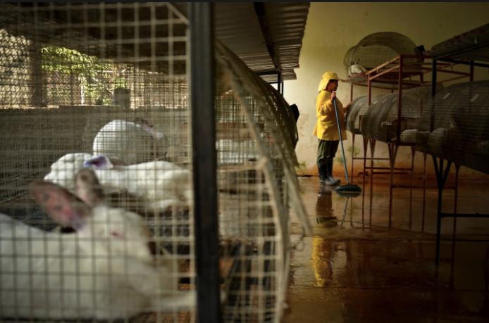 Cómo se vive adentro de una prisión entre tortura y maras en 24 fotografías de Meredith Kohut 16