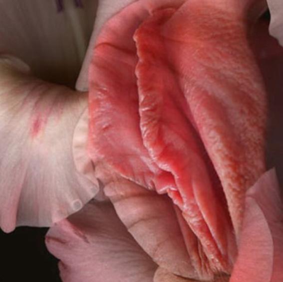 mitos sobre la vagina 1
