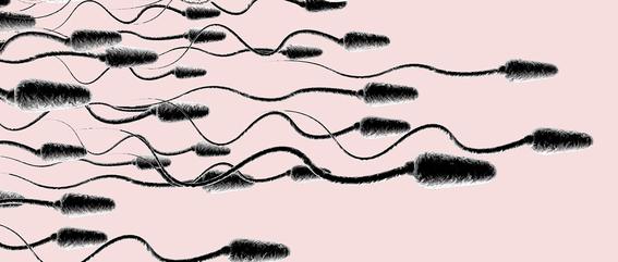 esperma para curar el cancer cervicouterino 1