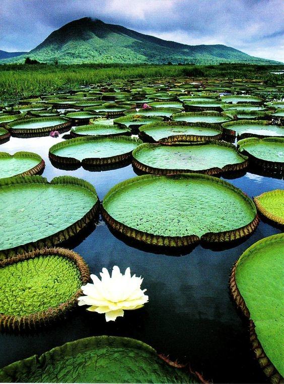 lugares turisticos de brasil 3