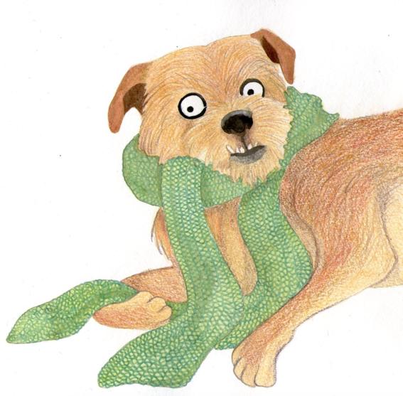 ilustraciones de sharon barcs 21