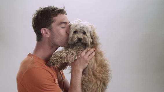 besar a tu mascota provoca cancer 3