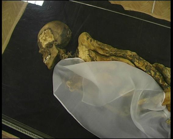 descubren restos prehistoricos por derretimiento en siberia 6