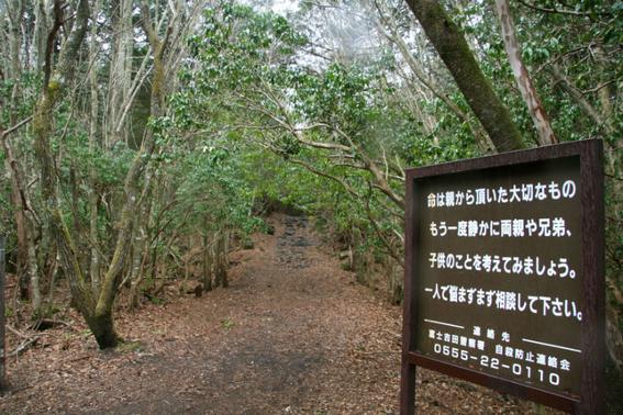 bosque de aoakigahara 2