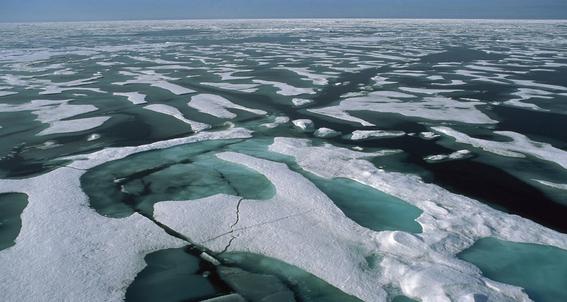 radiactividad en el oceano artico 3