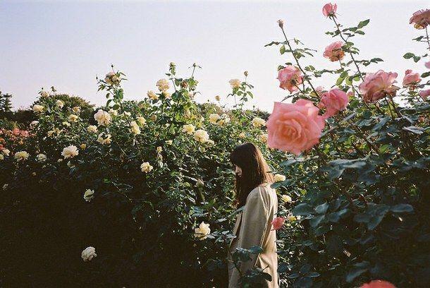 Poema para las muchachas salvajes que no le tienen miedo al amor ni a la noche 0