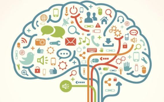 descifrar los secretos del cerebro humano 2