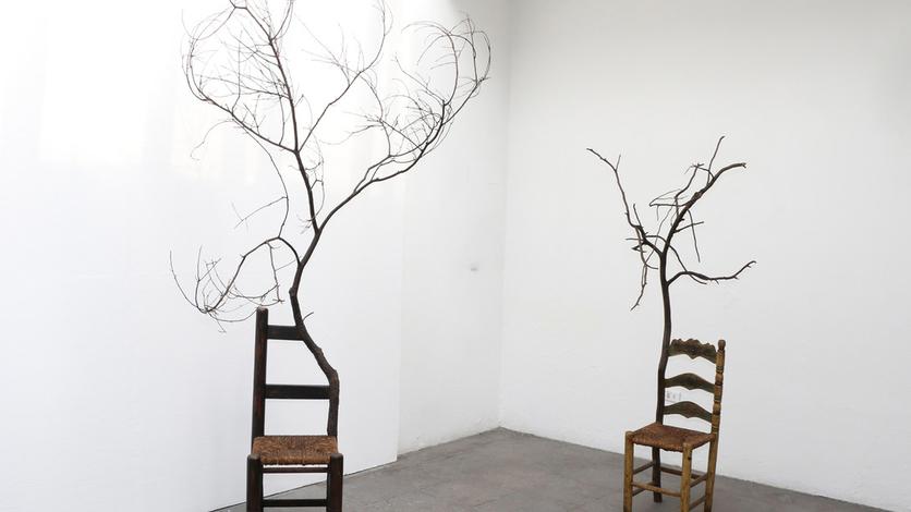 Razones por las que el arte contemporáneo es un fraude 1