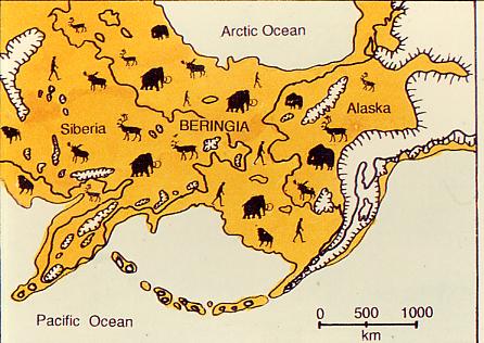 adn de nino de alaska revela que todos provenimos de la misma poblacion 1