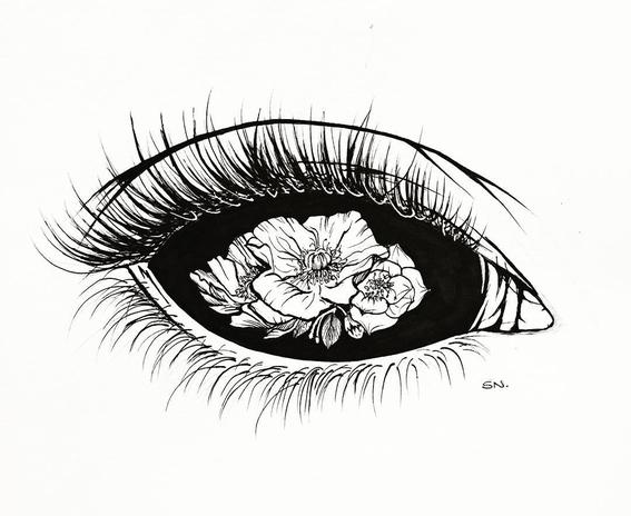 sarah norman illustrations 2