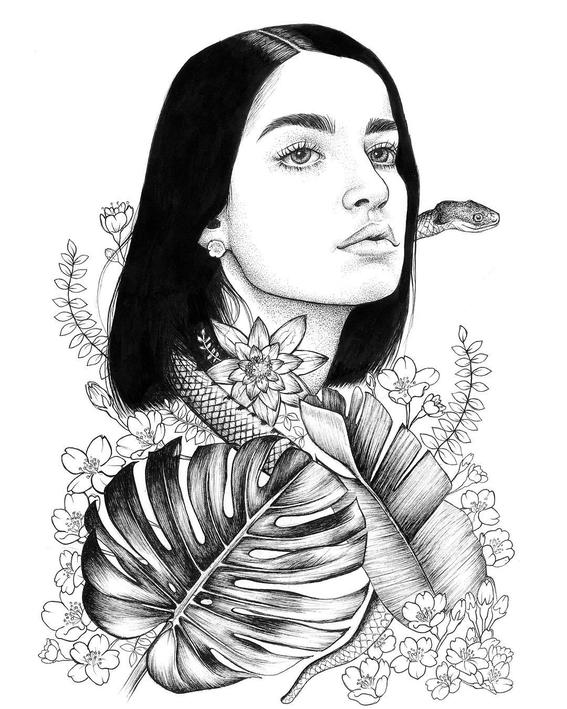 sarah norman illustrations 10