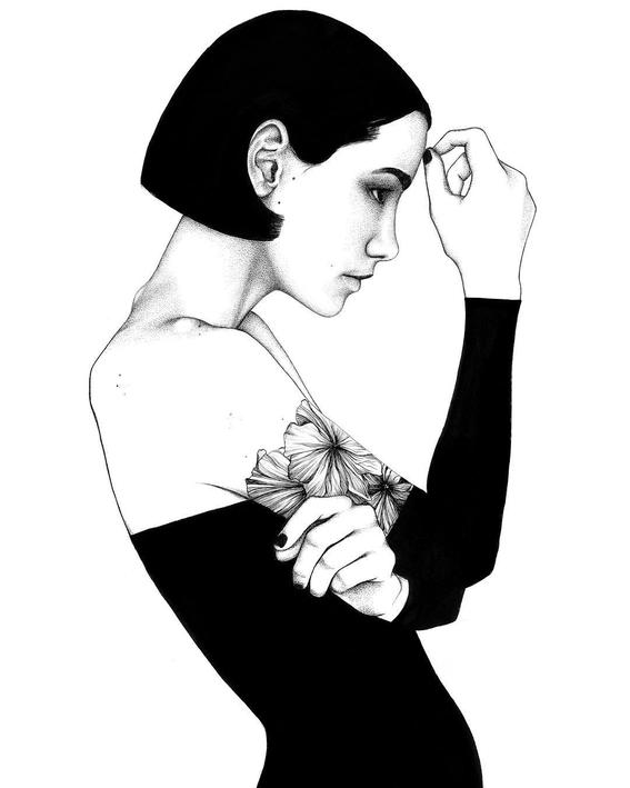 sarah norman illustrations 7