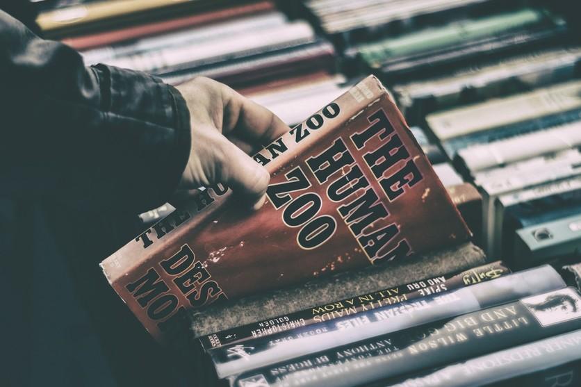Las mejores librerías que puedes encontrar en el Centro Histórico 3