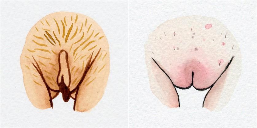 Watercolor Vaginas That Explore The Diversity Of Womanhood 0