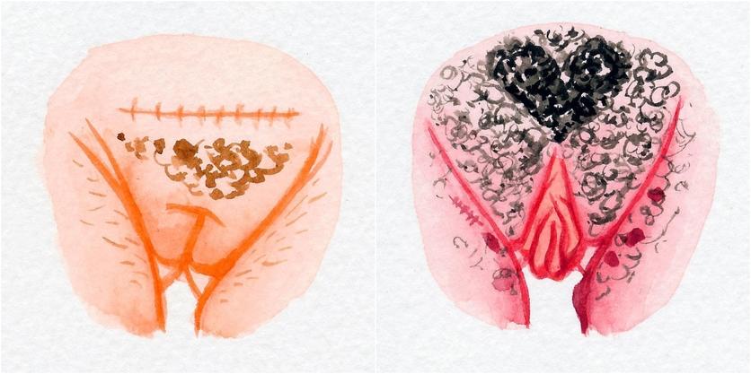 Watercolor Vaginas That Explore The Diversity Of Womanhood 6