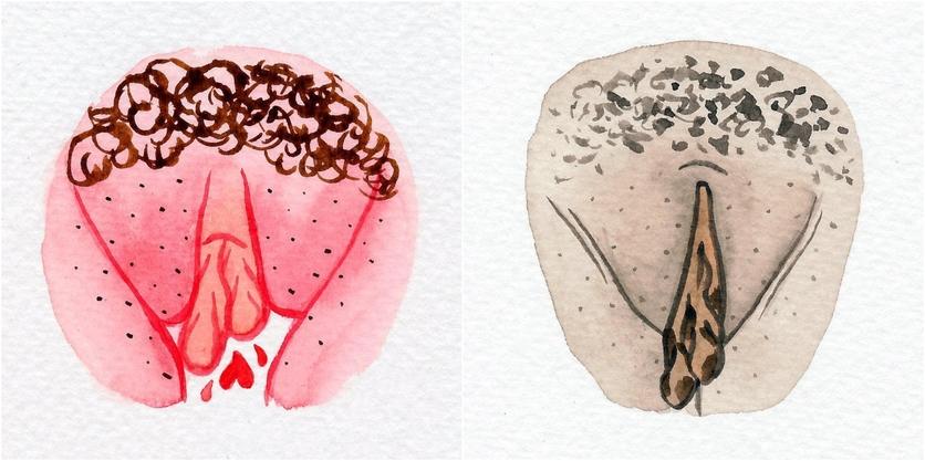 Watercolor Vaginas That Explore The Diversity Of Womanhood 7