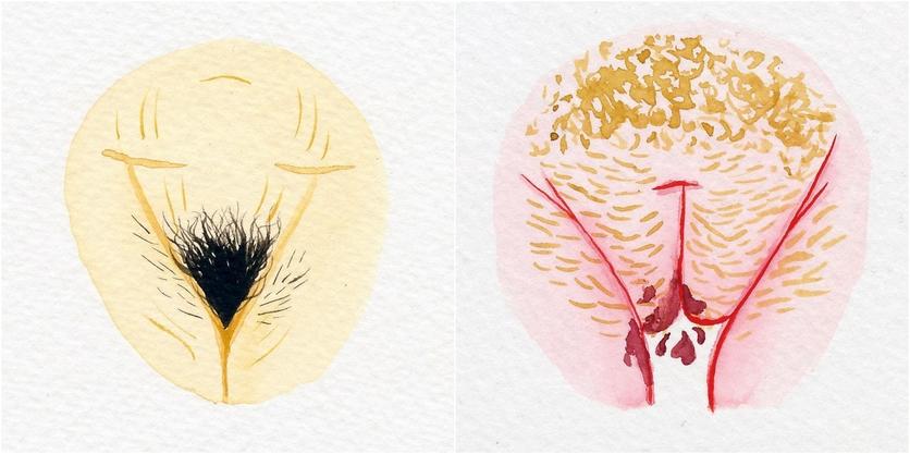 Watercolor Vaginas That Explore The Diversity Of Womanhood 8
