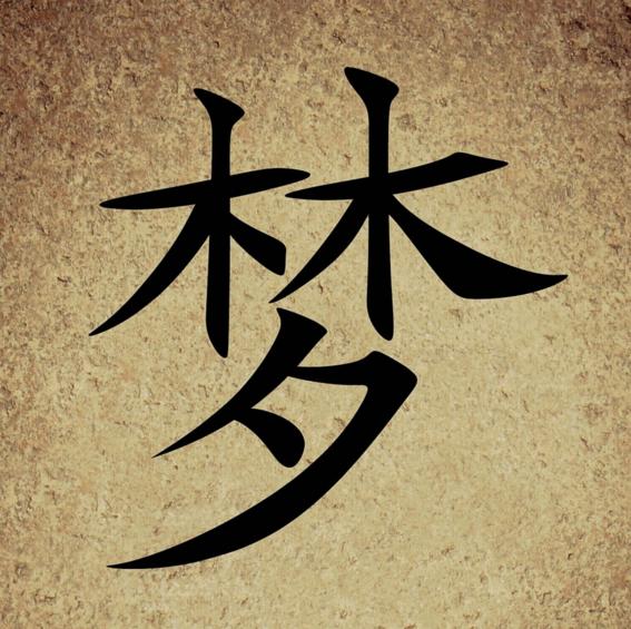 tatuajes de simbolos chinos 6