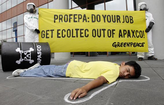 aumentan los asesinatos de defensores de los bosques en mexico 4