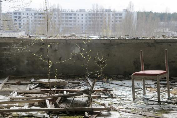 planta solar en chernobyl 3