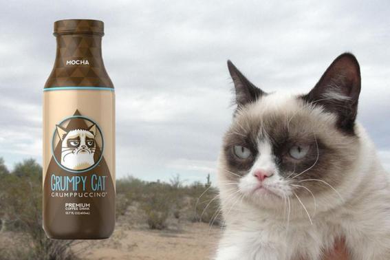 grumpy cat gano miles de dolares por derechos de autor de sus memes 1