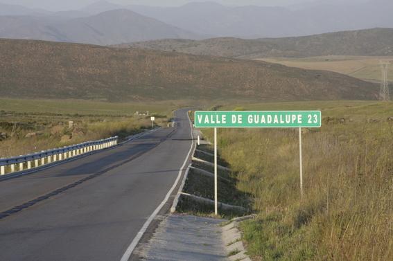 valle de guadalupe 2