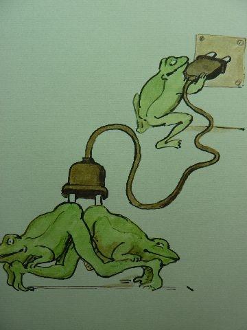 joy of frogs 4