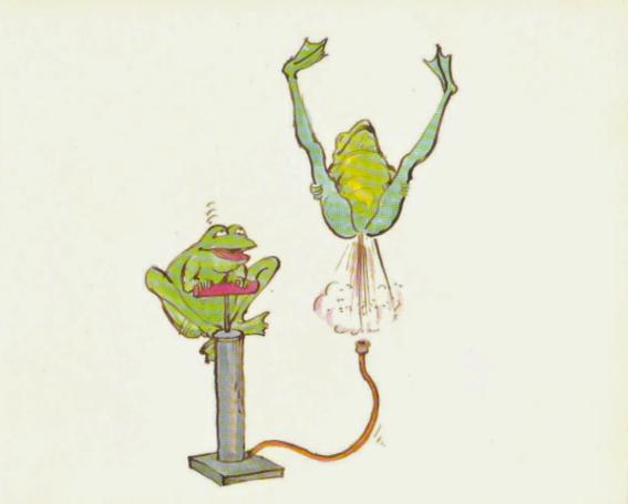 joy of frogs 5
