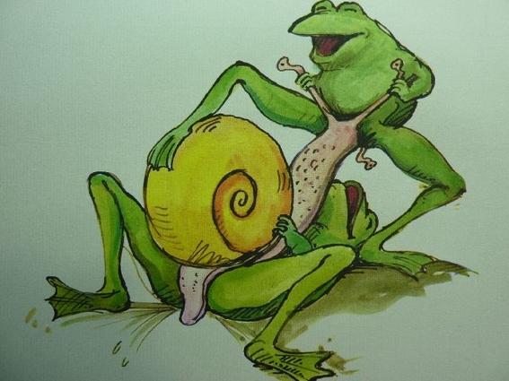joy of frogs 12
