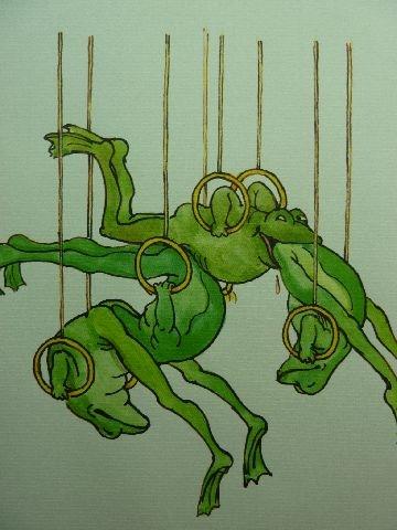 joy of frogs 14