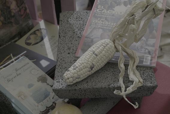 ginebra de maiz y tacos de insectos en claustro de sor juana 1