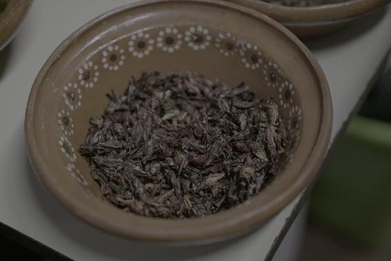 ginebra de maiz y tacos de insectos en claustro de sor juana 12