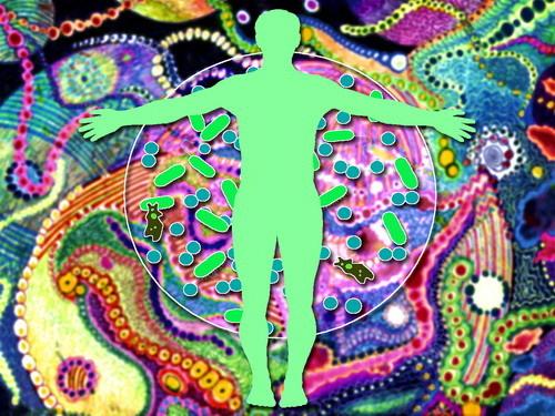 porque los microbios son buenos para la salud 3
