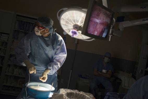 trafico de organos en america latina 1