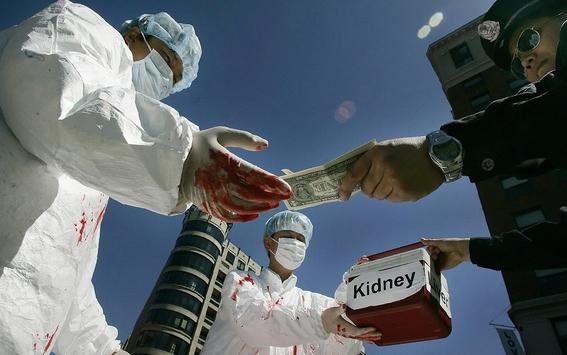 trafico de organos en america latina 2