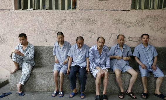 epidemia de gripe porcina en corea del norte 2