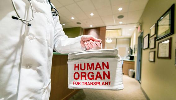 holanda convierte a todos sus ciudadanos en donantes de organos 1