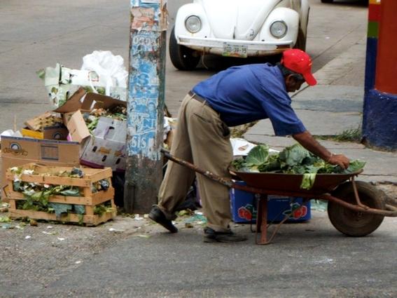 canasta basica y pobreza laboral mexico 1