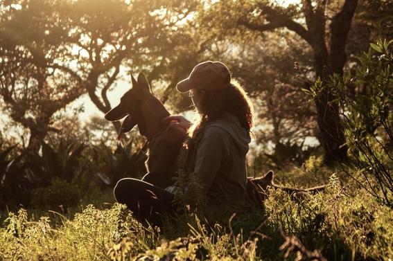 consejos para viajar con tu mascota 1