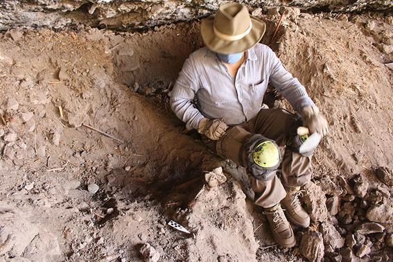 descubren momia de guacamaya 2