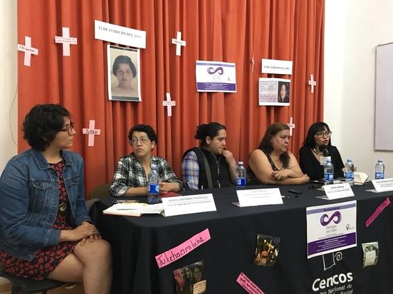 familiares victimas de feminicidio buscan justicia en la cidh 1