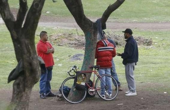 pelean carteles venta de droga en ciudad universitaria 1