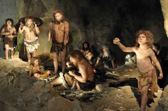 evolucion humana 2