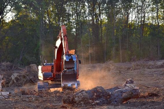 crisis de sequia por la deforestacion en el amazonas 1