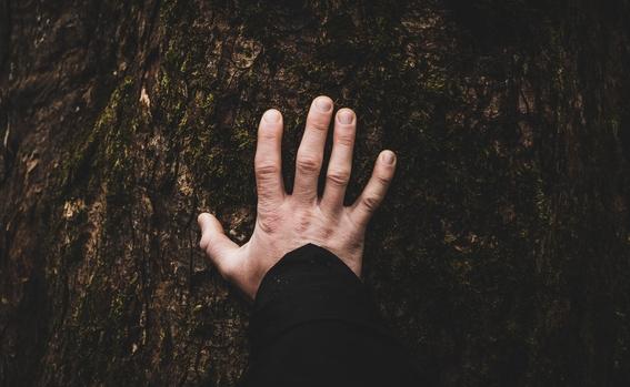 que secretos esconde la forma de tu mano 1