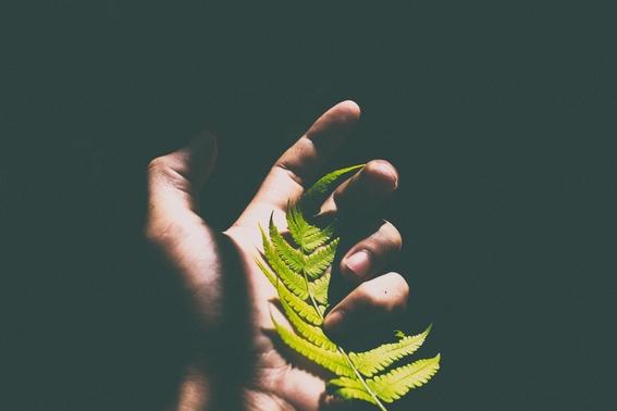 que secretos esconde la forma de tu mano 3
