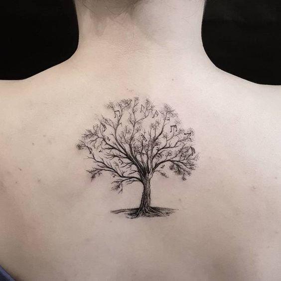 arbol bodhi 7