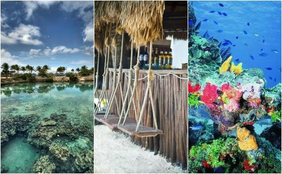Las 7 playas más hermosas (e interesantes) para visitar en Cozumel