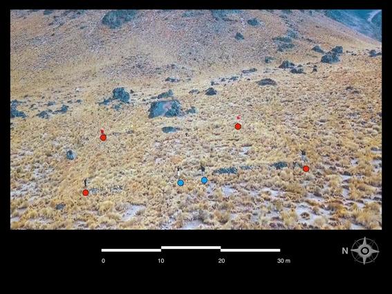 encontrados restos prehispanicos en pico de orizaba 2